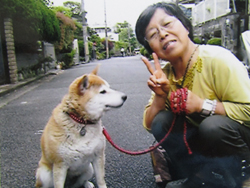 京都府宇治市 竹谷様/風ちゃん 犬種:柴犬 6歳半