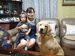 京都市山科区 鵜飼様/たろうちゃん 犬種・ゴールデン レトリーバー 1歳3ヵ月